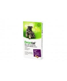A.U.V. DRONTAL PLUS TABL. 6X Bayer Állatpatika 3,846.55 Dió patika online gyógyszertár internetes gyógyszerrendelés Budakeszi