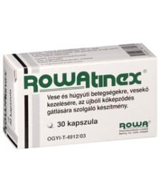 ROWATINEX LAGY KAPSZULA 30X  Felfázás 1,319.55 Dió patika online gyógyszertár internetes gyógyszerrendelés Budakeszi