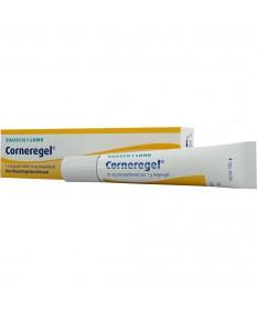 CORNEREGEL SZEMGEL  1X10 G  Szemcseppek 1,538.05 Dió patika online gyógyszertár internetes gyógyszerrendelés Budakeszi